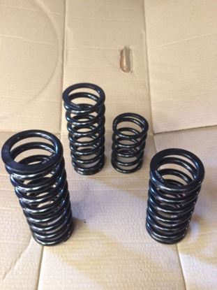 Picture of Micra K11 Junior Rod Spring Kit
